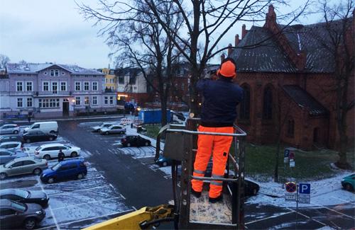 Baumfällarbeiten am Kirchenplatz in Warnemünde. Foto: Jan Heuer
