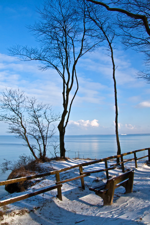 Der Küstenwald von Warnemünde bietet Erholung pur. Foto: Jens Schröder