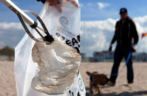 Müllsäcke der Müllsammelaktion in Warnemünde. Foto: Matthias Marx