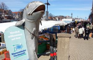 Fischmarkt in Warnemünde auf der östlichen Seite des Alten Stroms