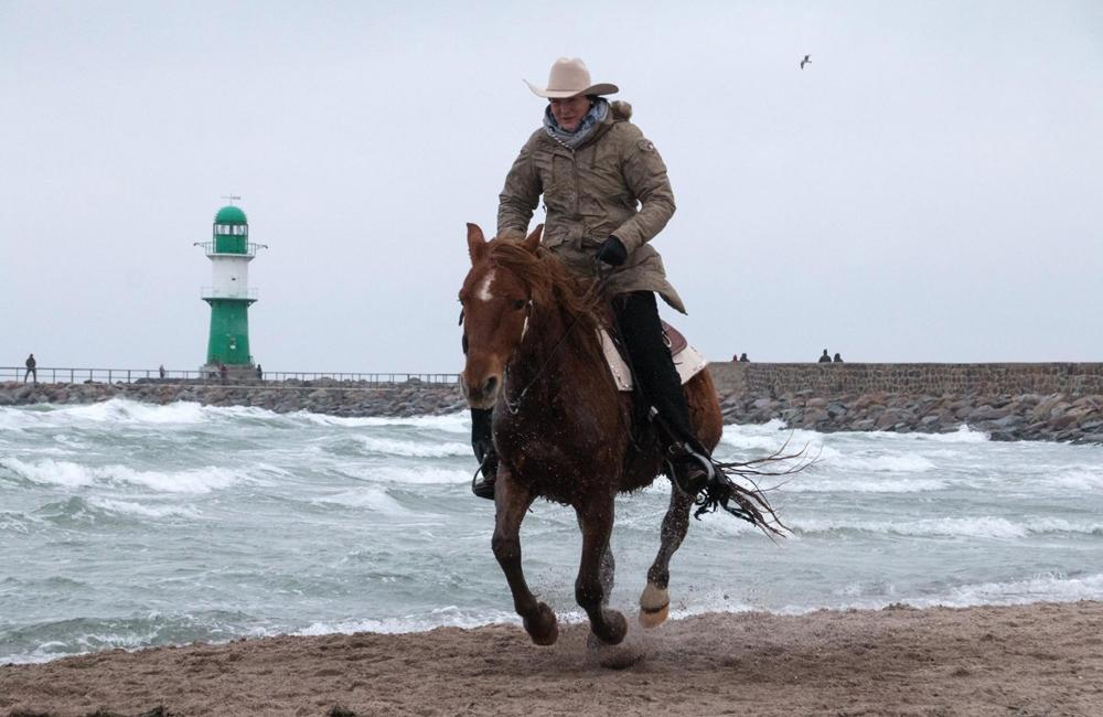 Pferd und Reiter beim 6. Warnemünder Wintervergnügen am Strand. Foto: Jens Schröder