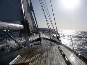 Mitsegeln auf der Ostsee vor Warnemünde