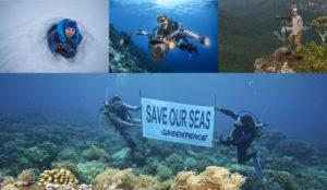 Greenpeace präsentiert: Die Welt im Wandel von Markus Mauthe