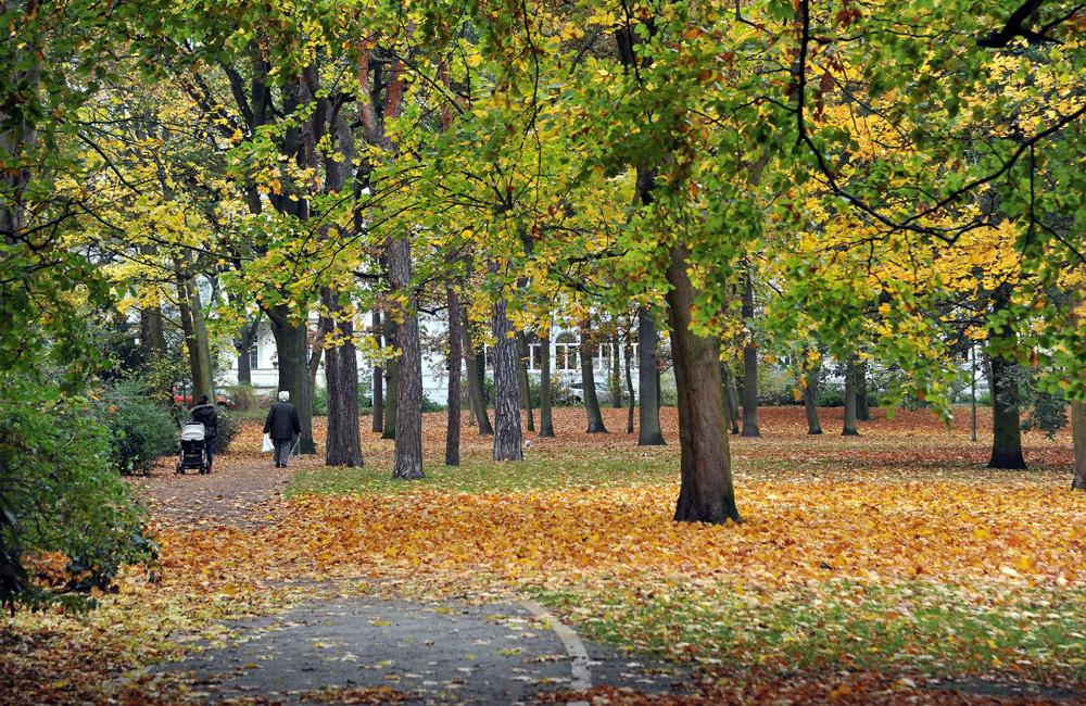 Kurpark Warnemünde im Herbst. Foto: Joachim Kloock