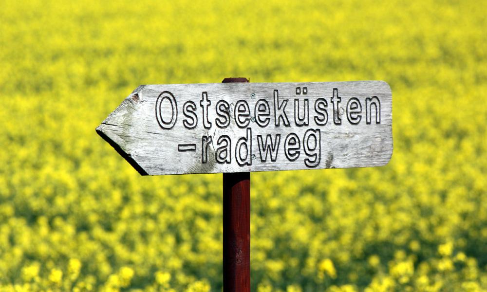 Ausschilderung des Ostseeküstenradweg in Diedrichshagen. Foto: Martin Schuster