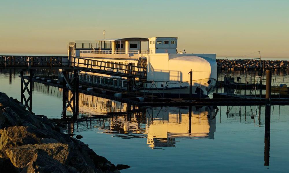 Robbenforschungszentrum Hohe Düne. Foto: Jens Schröder